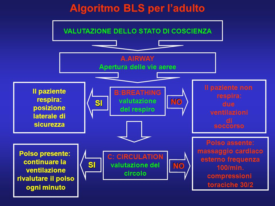 Algoritmo BLS per l'adulto