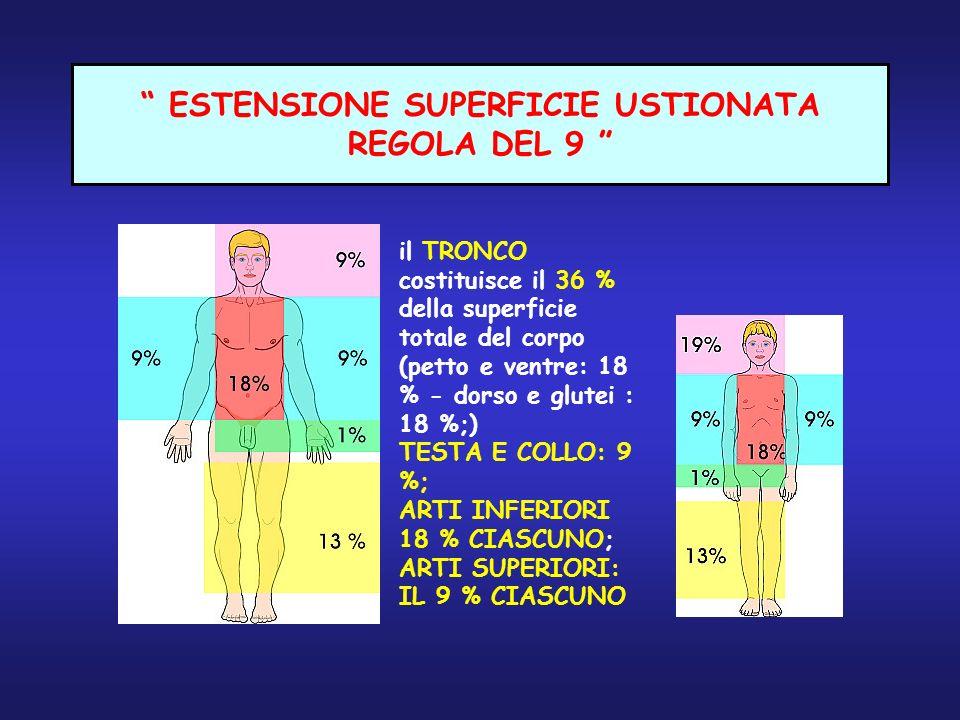ESTENSIONE SUPERFICIE USTIONATA REGOLA DEL 9