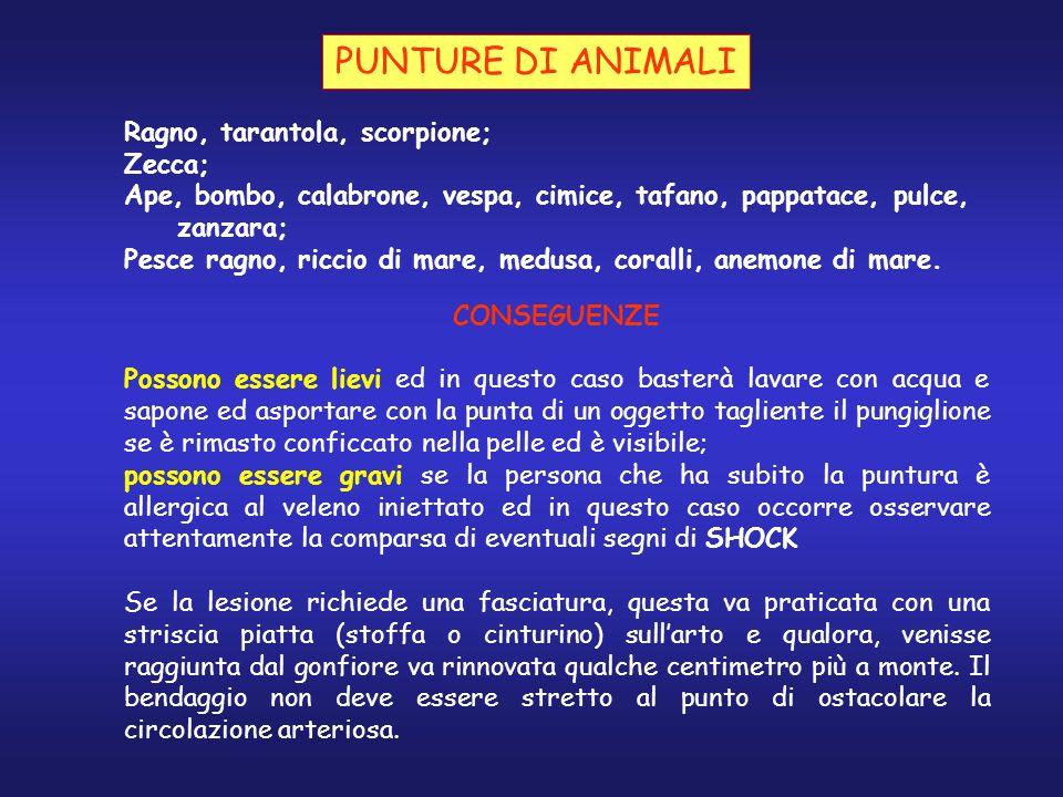 PUNTURE DI ANIMALI Ragno, tarantola, scorpione; Zecca;
