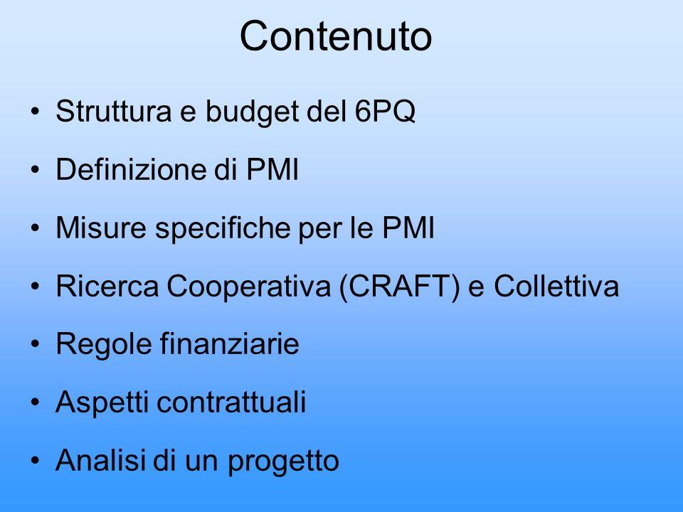Contenuto Struttura e budget del 6PQ Definizione di PMI