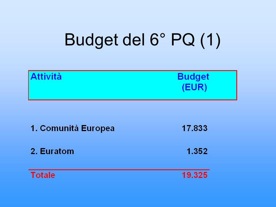 Budget del 6° PQ (1)