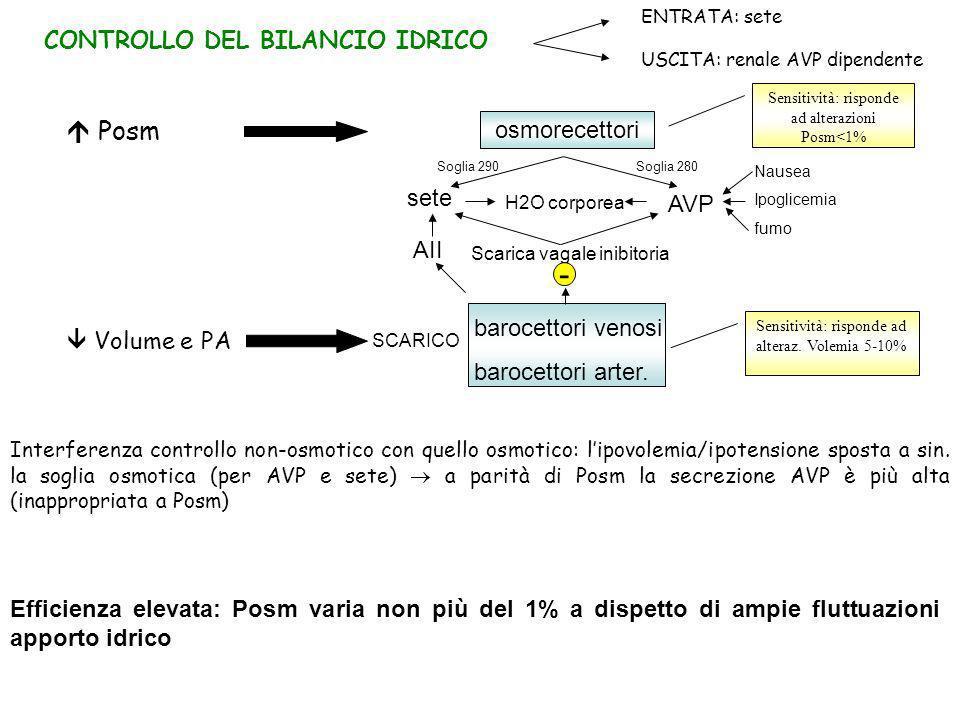 -  Posm CONTROLLO DEL BILANCIO IDRICO osmorecettori sete AVP AII
