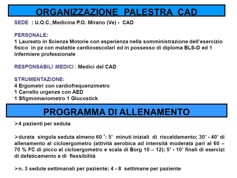 ORGANIZZAZIONE PALESTRA CAD PROGRAMMA DI ALLENAMENTO