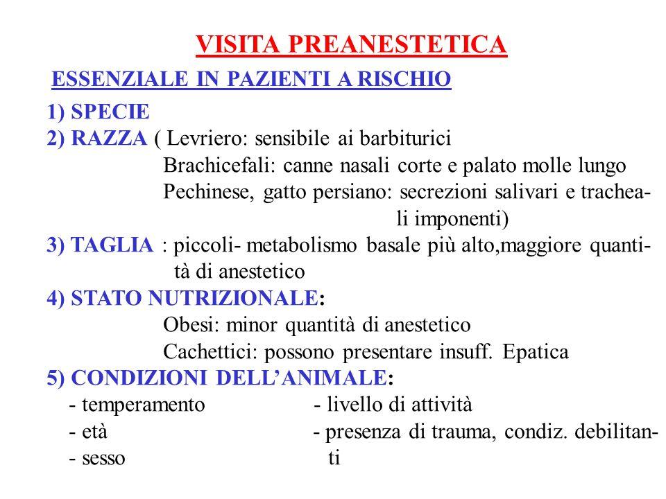 VISITA PREANESTETICA ESSENZIALE IN PAZIENTI A RISCHIO 1) SPECIE