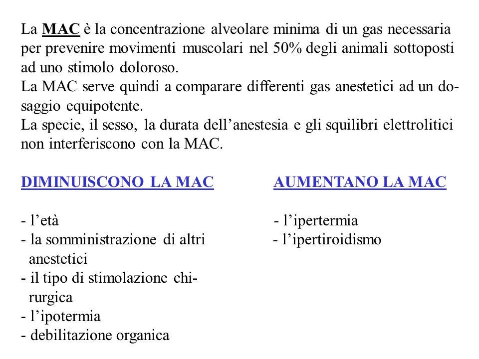 La MAC è la concentrazione alveolare minima di un gas necessaria