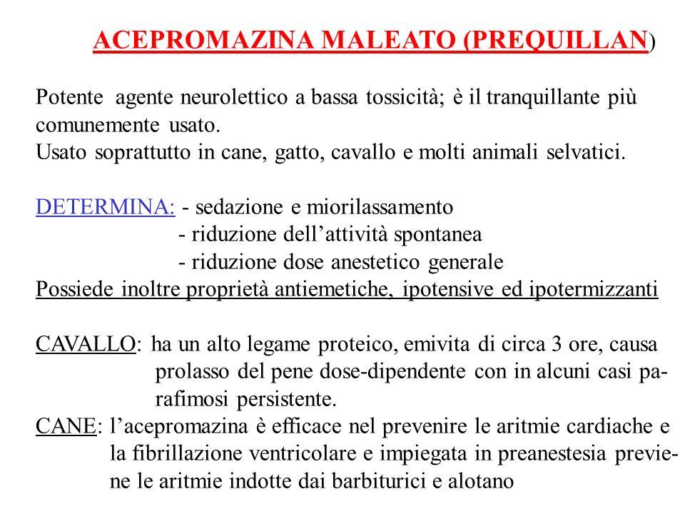 ACEPROMAZINA MALEATO (PREQUILLAN)
