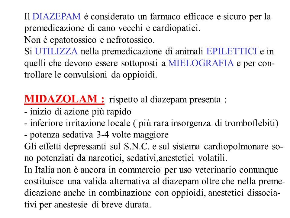 MIDAZOLAM : rispetto al diazepam presenta :