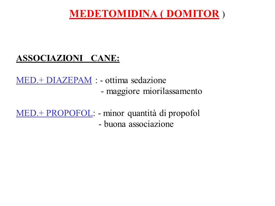 MEDETOMIDINA ( DOMITOR )