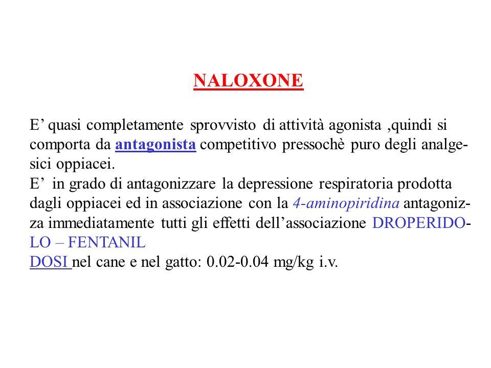 NALOXONE E' quasi completamente sprovvisto di attività agonista ,quindi si. comporta da antagonista competitivo pressochè puro degli analge-