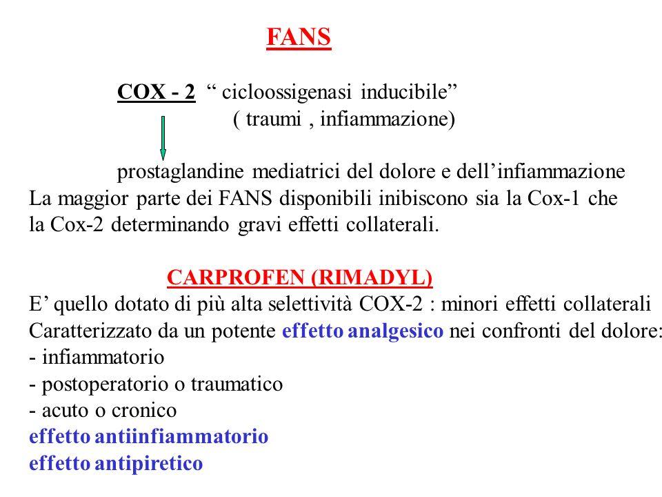 FANS COX - 2 cicloossigenasi inducibile ( traumi , infiammazione) prostaglandine mediatrici del dolore e dell'infiammazione.