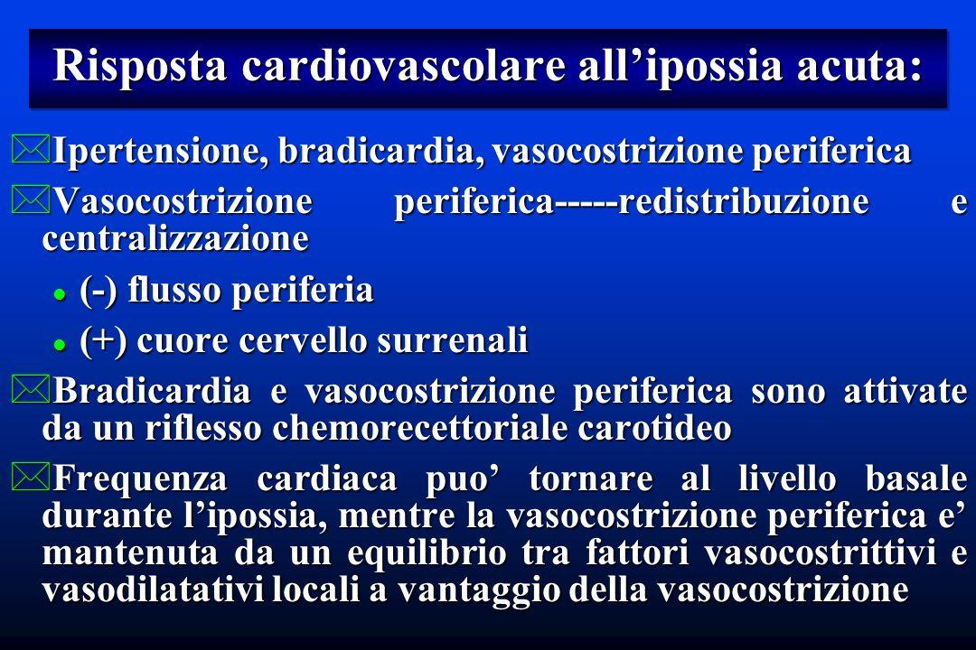 Risposta cardiovascolare all'ipossia acuta: