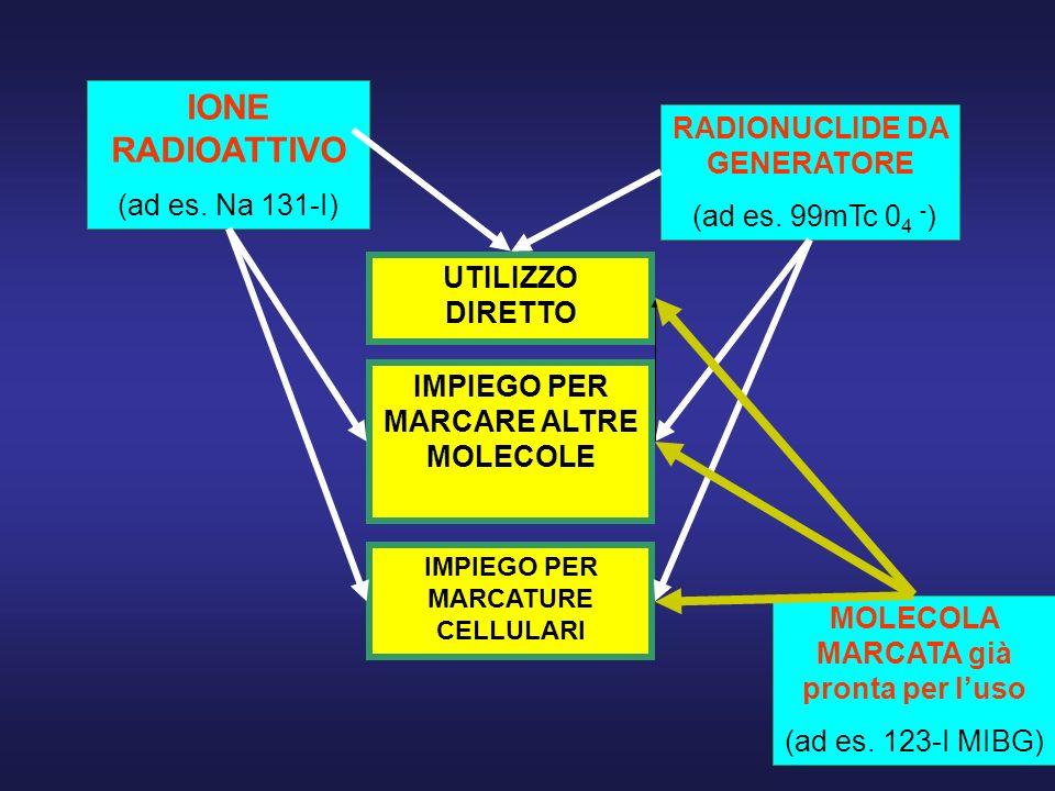 IONE RADIOATTIVO RADIONUCLIDE DA GENERATORE (ad es. Na 131-I)