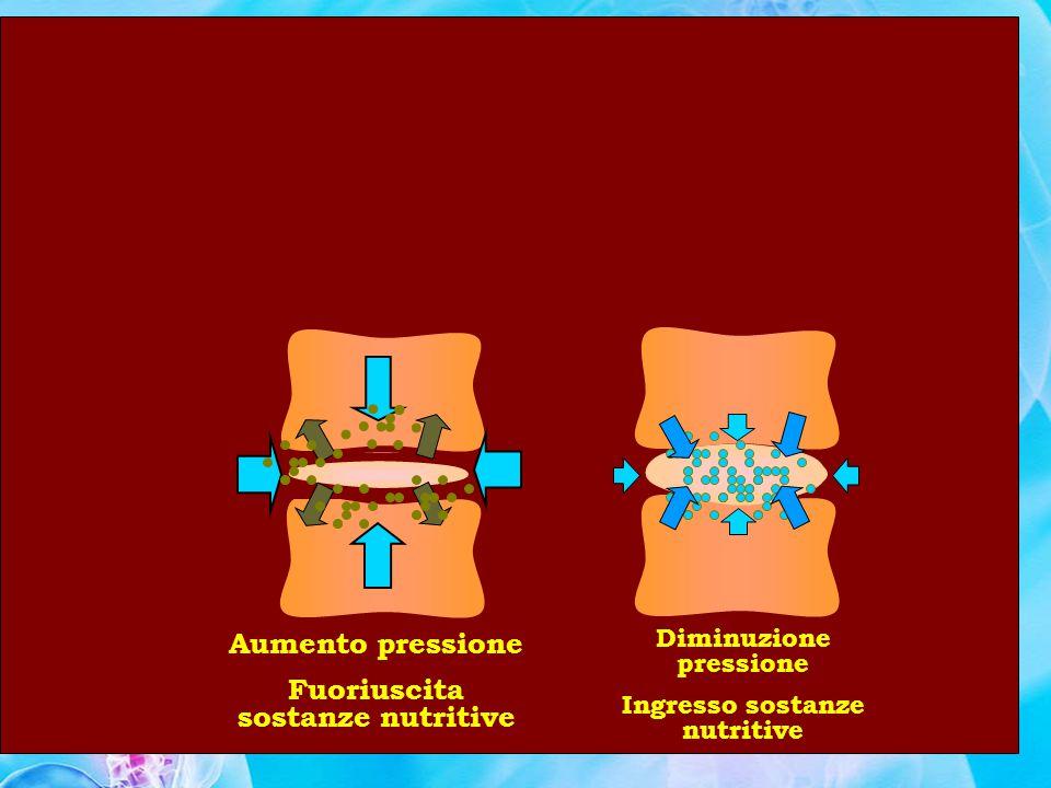 Aumento pressione Fuoriuscita sostanze nutritive
