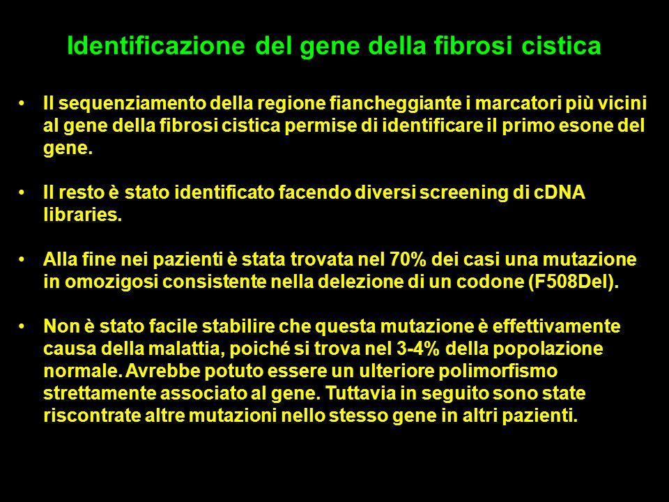 Identificazione del gene della fibrosi cistica
