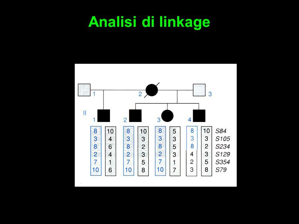 Analisi di linkage