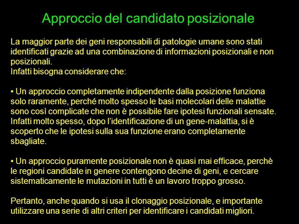 Approccio del candidato posizionale