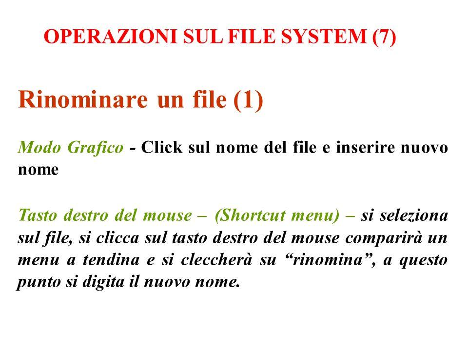 Rinominare un file (1) OPERAZIONI SUL FILE SYSTEM (7)