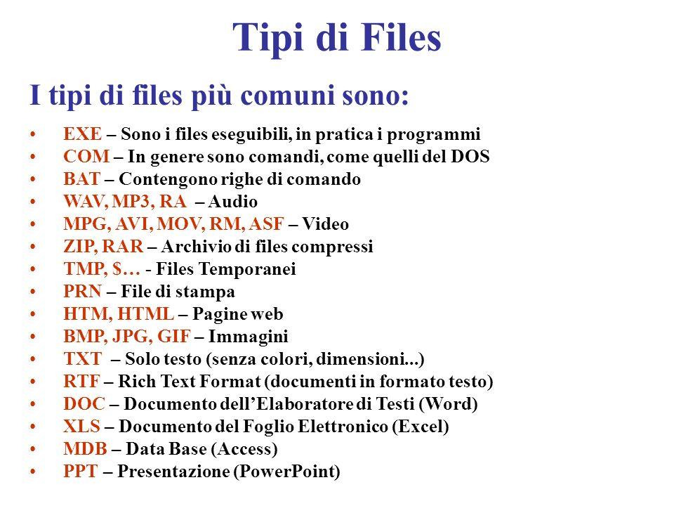 Tipi di Files I tipi di files più comuni sono: