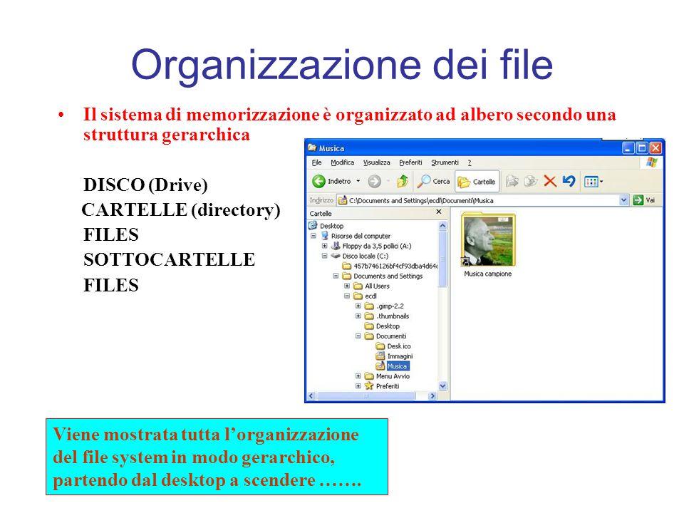 Organizzazione dei file