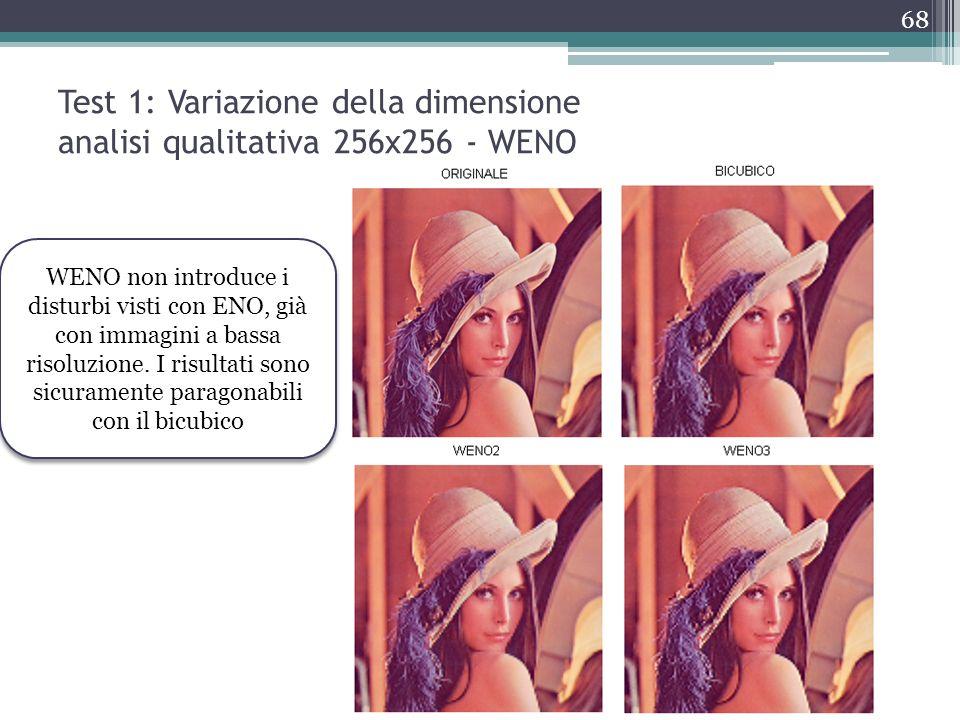 Test 1: Variazione della dimensione analisi qualitativa 256x256 - WENO