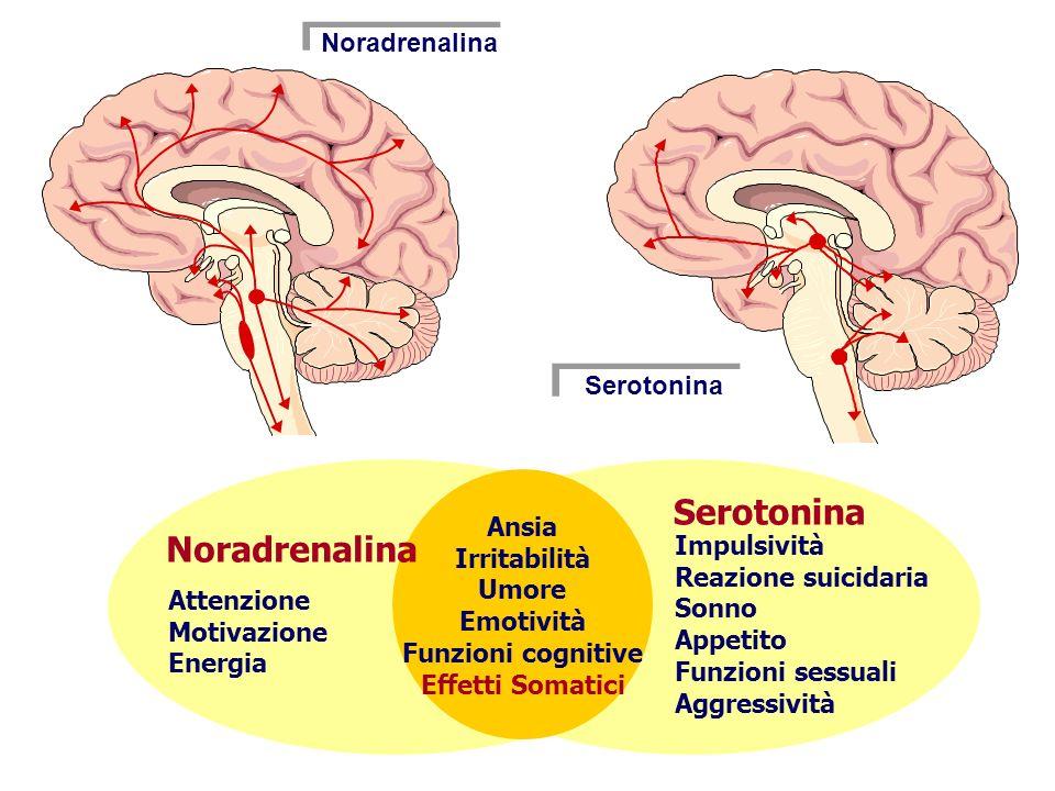 Serotonina Noradrenalina Noradrenalina Serotonina Ansia Irritabilità