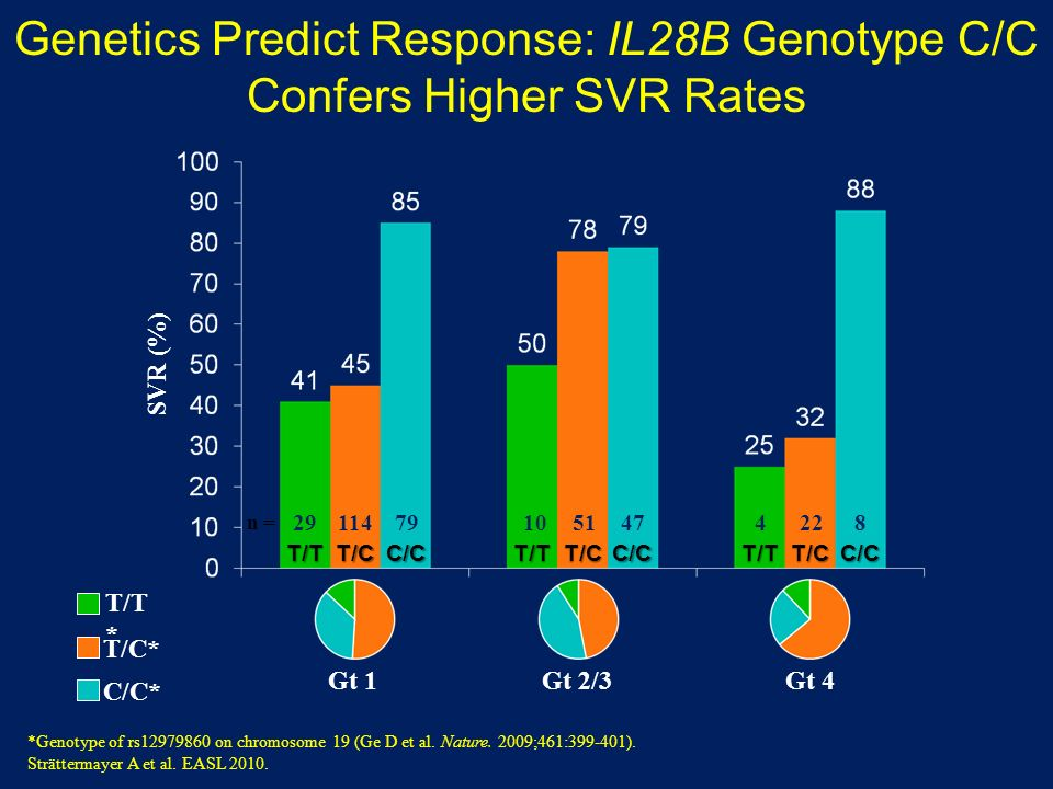 Genetics Predict Response: IL28B Genotype C/C Confers Higher SVR Rates