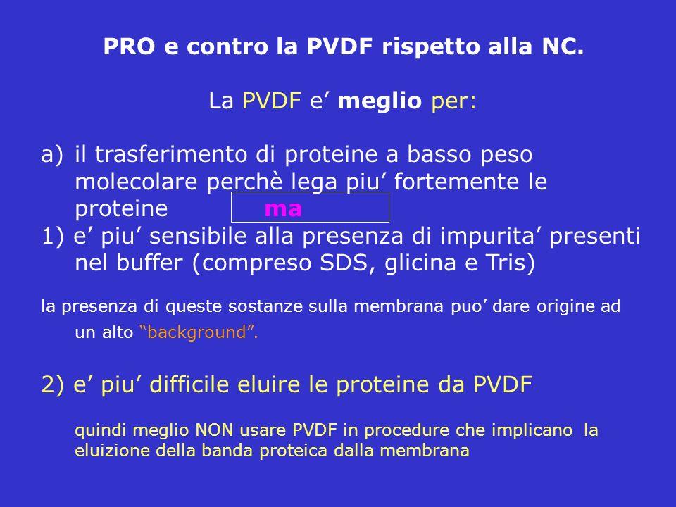PRO e contro la PVDF rispetto alla NC.