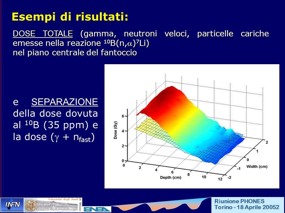 Esempi di risultati: DOSE TOTALE (gamma, neutroni veloci, particelle cariche emesse nella reazione 10B(n,)7Li)