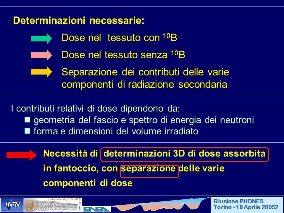 Determinazioni necessarie: Dose nel tessuto con 10B