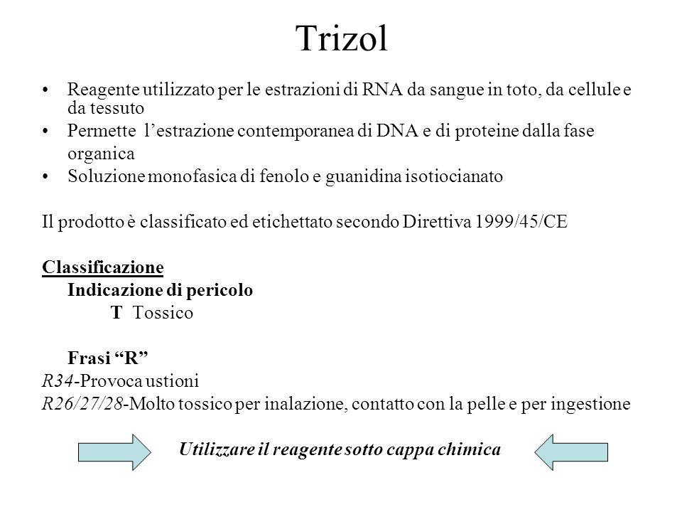 Trizol Reagente utilizzato per le estrazioni di RNA da sangue in toto, da cellule e da tessuto.