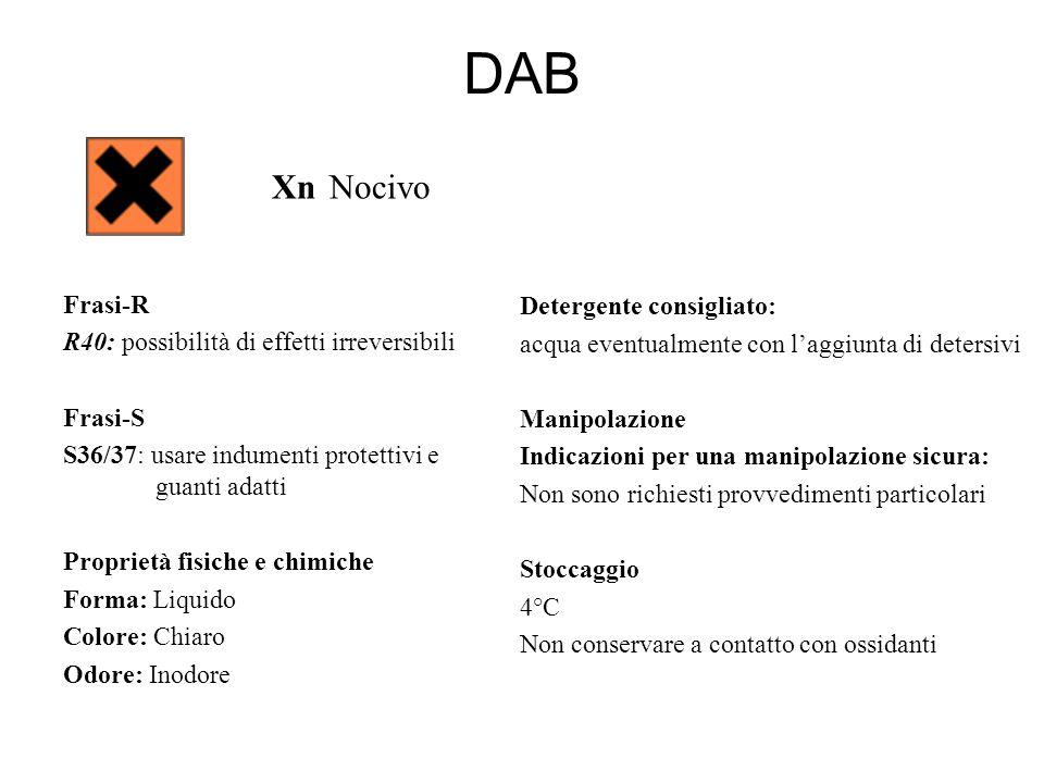 DAB Xn Nocivo Frasi-R R40: possibilità di effetti irreversibili