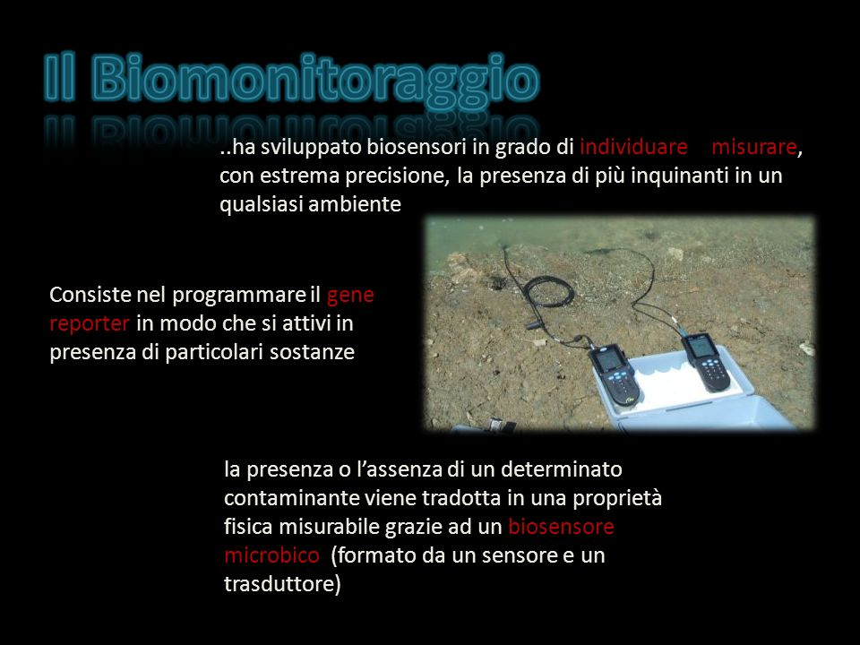 Il Biomonitoraggio