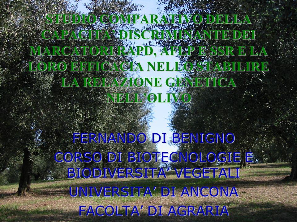CORSO DI BIOTECNOLOGIE E BIODIVERSITA' VEGETALI