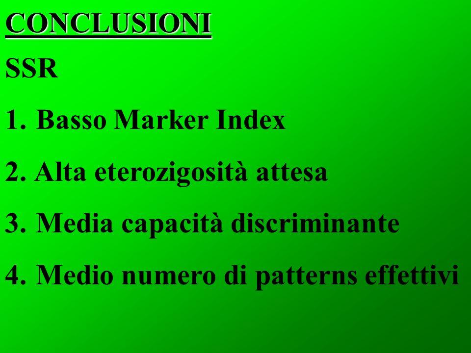 CONCLUSIONI SSR. Basso Marker Index. Alta eterozigosità attesa.