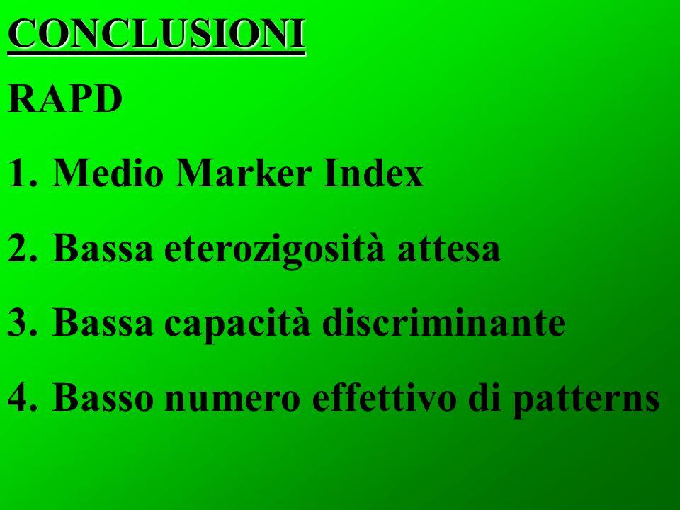 CONCLUSIONI RAPD. Medio Marker Index. Bassa eterozigosità attesa.