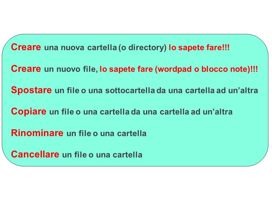 Creare una nuova cartella (o directory) lo sapete fare!!!