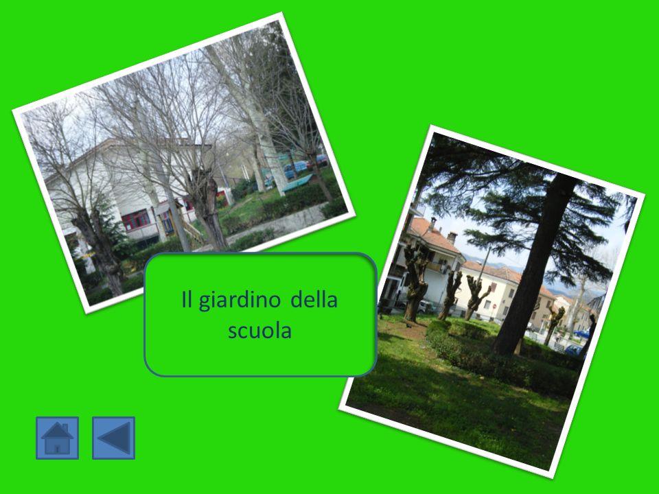 Il giardino della scuola