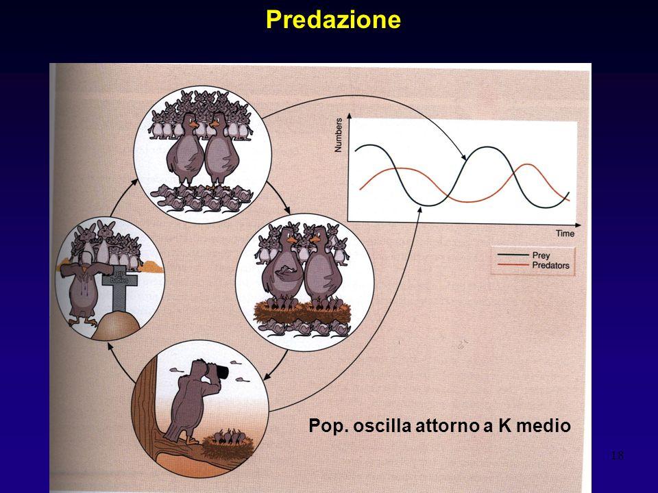 Predazione Pop. oscilla attorno a K medio