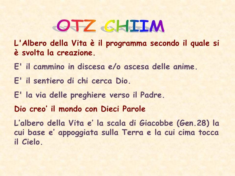OTZ CHIIM L Albero della Vita è il programma secondo il quale si è svolta la creazione. E il cammino in discesa e/o ascesa delle anime.