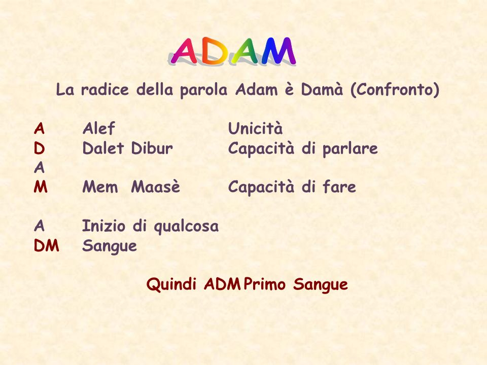 La radice della parola Adam è Damà (Confronto) Quindi ADM Primo Sangue