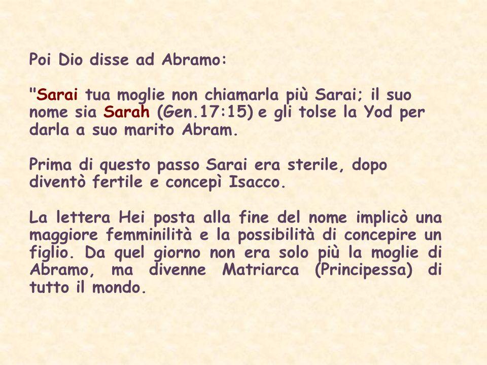 Poi Dio disse ad Abramo: