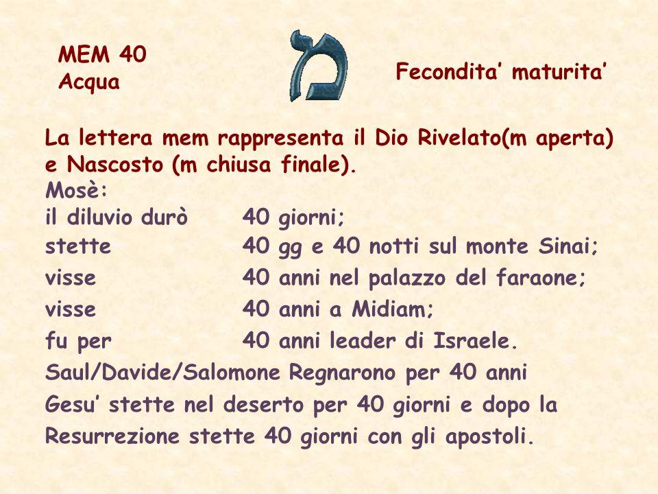 MEM 40 Acqua. Fecondita' maturita' La lettera mem rappresenta il Dio Rivelato(m aperta) e Nascosto (m chiusa finale).