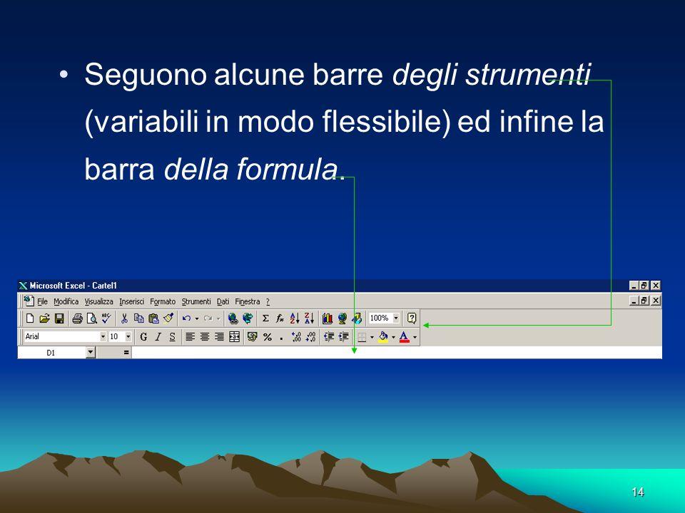 Seguono alcune barre degli strumenti (variabili in modo flessibile) ed infine la barra della formula.