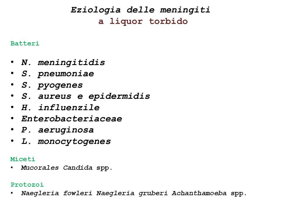 Eziologia delle meningiti a liquor torbido