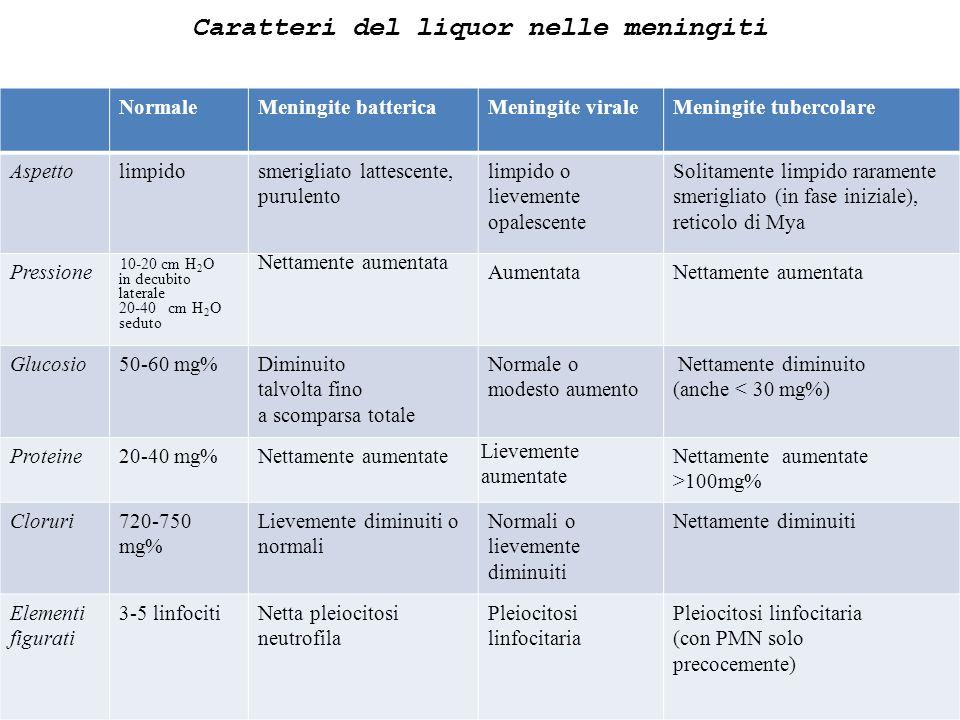 Caratteri del liquor nelle meningiti