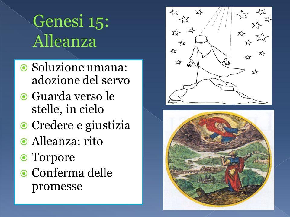 Genesi 15: Alleanza Soluzione umana: adozione del servo