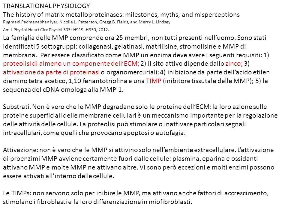 TRANSLATIONAL PHYSIOLOGY
