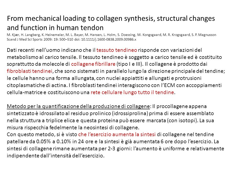 From mechanical loading to collagen synthesis, structural changes and function in human tendon