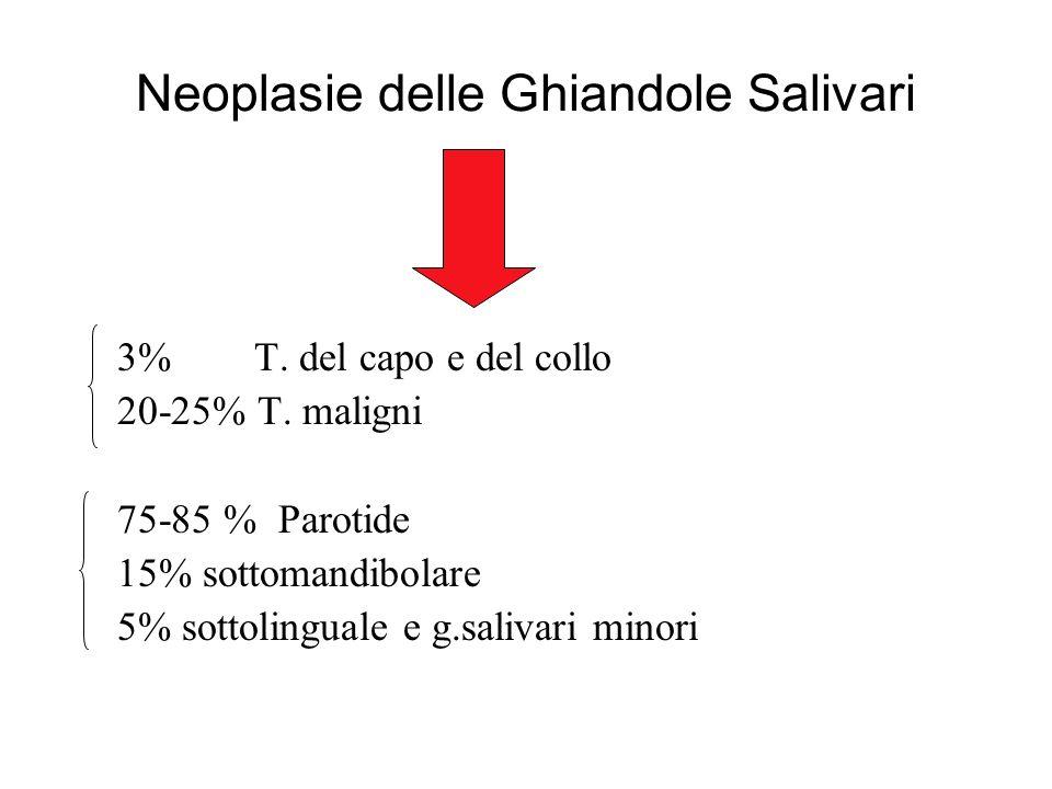 Neoplasie delle Ghiandole Salivari