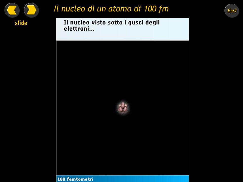 Il nucleo di un atomo di 100 fm